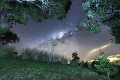 domaine fleurié (Francis Nicolle) Tags: iledelaréunion reunionisland ciel sky nuages clouds astrophotography astro nature étoiles tokina tokina1120 nikon nikond500 night nuit nightphotography nightscape voielactée milkyway montagne