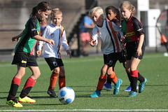 """HBC Voetbal • <a style=""""font-size:0.8em;"""" href=""""http://www.flickr.com/photos/151401055@N04/48657053146/"""" target=""""_blank"""">View on Flickr</a>"""
