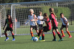 """HBC Voetbal • <a style=""""font-size:0.8em;"""" href=""""http://www.flickr.com/photos/151401055@N04/48657054216/"""" target=""""_blank"""">View on Flickr</a>"""