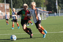 """HBC Voetbal • <a style=""""font-size:0.8em;"""" href=""""http://www.flickr.com/photos/151401055@N04/48657201122/"""" target=""""_blank"""">View on Flickr</a>"""