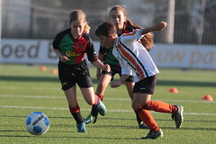 """HBC Voetbal • <a style=""""font-size:0.8em;"""" href=""""http://www.flickr.com/photos/151401055@N04/48657202247/"""" target=""""_blank"""">View on Flickr</a>"""