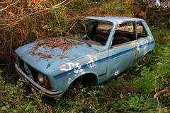 Citroen LNA 2 - SJ (38) (Raphael Drake) Tags: decay decayed rurex abandoned abandonne car wreck epave voiture citroen ln lna