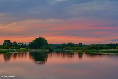 Evening light by the lake (Petra S photography) Tags: brandenburg sonnenuntergang sunset brandenburgcounty aftersunset beautifullight lake friedland friedländerteiche landkreisoderspree