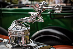 a wonderful classic PACKARD ROADSTER - front detail (Peters HDR hobby pictures) Tags: petershdrstudio hdr packard frontdetail classiccar car klassiker kühlerfigur oldtimer roadster