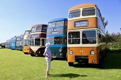 Sandtoft Trolley Bus Museum 25 Aug 19 (doughnut14) Tags: trolleybus sandtoft cardiff cleethorpes maidstone glasgow ckg193 fw8990 tb78 trolley bus museum cum orange isaacshill fys839