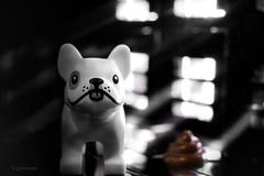 Guilty Dog💩 (legomeee) Tags: guiltydog legodog legography lego legophotography marco closeup dogpoo legofun