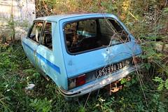 Citroen LNA 1 - SJ (38) (Raphael Drake) Tags: decay decayed rurex abandoned abandonne car wreck epave voiture citroen ln lna