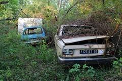 Volvo 244 et Citroen LNA - SJ (38) (Raphael Drake) Tags: epave voiture car wreck abandoned abandonne caravane volvo 244 citroen ln lna rurex decay decayed barn