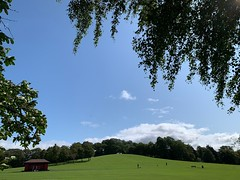 Barshaw Park, Paisley (markshephard800) Tags: barshawpark barshaw sunshine green parc summer park scotland paisley