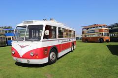 Trolley Bus 5 - Sandtoft 25 Aug 19 (doughnut14) Tags: limoges bus trolley cum vetra derby maidstone sandtoft museum singledecker trolleybus
