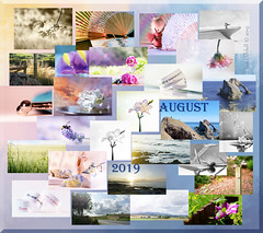 My way of wrapping up the month - my collage for August. (Elisafox22) Tags: elisafox22 august 2019 collage snapshot images summary thumbnails border bowfiddlerock leaves flowers fyviecastle monochrome landscape sunshine trees glass abstract macro paper fan fans kokeshi kokeshidoll seashore bench fyvie sky clouds fences outdoor indoor stilllife blackandwhite postprocessing banff tulip freesia lily white black sepia pink red blue snailshell bamboo lavender reededglass iris gerbera hydrangea aberdeenshire scotland elisaliddell©2019 bw