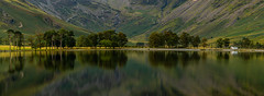 Buttermere Pano (1 of 1) (selvagedavid38) Tags: lakedistrict lake buttermere pines shore water panorama nationalpark england trees scenic landscape green reflection leau mountains cumbria pano