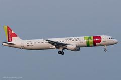 A321_TP1274 (LIS-VIE)_CS-TJH_1 (VIE-Spotter) Tags: vienna airport vie wien flughafen airplane air spotten planespotting flugzeug himmel