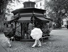 Rainy day in Rome. (radimersky) Tags: rome italy włochy umbrella blackwhite bw streetphotography city street day czarnobiałe photography panaosnic lumixgvario1260f3556 microfourthirds 43 monohrome august summer sierpień lato travelphotography parasole lumixgx9 gx9 dcgx9 people ludzie
