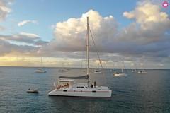 Niominka Tours - Niominka 2 - entier (niominka.tours) Tags: catamaran voile 52 pieds croisières excursions guadeloupe mariegalante saintes pointeàpitre dominique dominica grenadines ballade