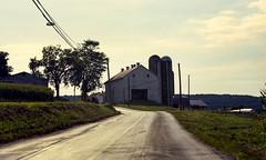 amish farm (bluebird87) Tags: amish farm dx0 c41 epson v800 lightroom jobo kodak ektar nikon f5