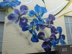 Den Haag Graffiti (M. loewe) Tags: thehaguestreetart zest artdrenaline byronzestaguenther achterom denhaag blauw bluegrouponflickr flickrblue flowers bloemen mural streetart detailvaneenmuur