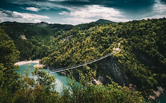 This is just a litle Monkey Bridge (Romain Didier) Tags: