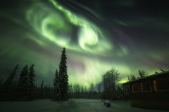 The Vortex (yan08865) Tags: alaska night fairbanks northern lights borealis pavlis landscapes outdoor nature colors sky earth aurora stars winter snow cabin hut trees solo photographers le canon wide sigma space alaskan