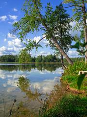 На природе // Outdoors (Alexx053) Tags: outdoor reflection tree sky cloud lake grass russia