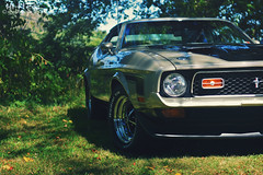 Pony in the Shade (Hi-Fi Fotos) Tags: 71 mustang mach1 pewter ford 70s american pony classiccar musclecar vintage 351 nikkor 1755 28 nikon d7200 dx hififotos hallewell