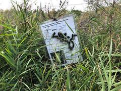 Habitat (mitue) Tags: wildau habitat flussregenpfeifer