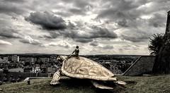 Turtle Eclipse of the Art (Jon_Wales) Tags: namur wallonie wallonia belge belgium belgique europe turtle flying citadel riding art sculpture tortue