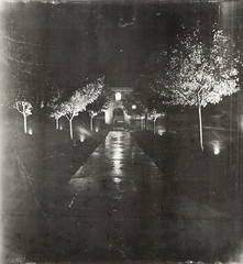 wet path (jssteak) Tags: night blackandwhite trees sprinklers sidewalk reflection