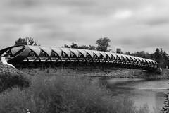 Peace Bridge, Calgary (Canada) (herbert@plagge) Tags: friedensbrücke brücke architektur santiagocalatrava fluss bow calgary alberta kanada canada peacebridge bowriver blackandwhite bridge architecture river ptbw artinbw