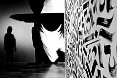 street art (christikren) Tags: austria abstract absoluteblackandwhite ausstellung art blackwhite black christikren contrast dark exhibition light monochrome museum noiretblanc panasonic photography sw vienna wien wienmuseum streetartskateboarding takeover karlsplatz silhouette canonpowershotg5x innamoramento