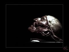 Tête de vieillard (orichier) Tags: face visage crâne artiste culture musée museum paris giulio zumbo artist