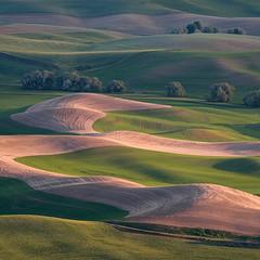 E (Brian.Schick) Tags: palouse steptoe washington rolling hills wheat