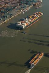 2019 08 31 UASC Zamzam_DVL7389 (larry_antwerp) Tags: crane container antwerp antwerpen gantry kraan 安特卫普 mpet 安特衞普 9541708 psaterminal fairplayxiv uasczamzam 9699127 port ship belgium belgie belgië vessel 比利時 船 schip بندر کشتی 海港 ベルギー 比利时 港口 船舶 ميناء سفينة بلجيكا 港湾 בלגיה אונייה бельгия אנטוורפן 항구 벨기에 선박 بلژیک बेल्जियम アントウェルペン 안트베르펜 أنتويرب פארט जलयान