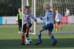 "HBC Voetbal • <a style=""font-size:0.8em;"" href=""http://www.flickr.com/photos/151401055@N04/48661052518/"" target=""_blank"">View on Flickr</a>"