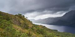 Beinn Eighe NNR (Donald Beaton) Tags: green uk scotland highlands scottish wester ross torridon loch maree landscape scene scenery view forest woodland beinn eighe nnr national nature reserve mountains sony alpha a7