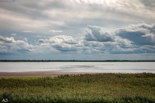 Oostvaardersdijk tussen Lelystad en Almere