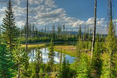 Mountain Serenity (PhotograTherapy (James Edmondson)) Tags: nikon d850 mountains forest lake alpine wallowas