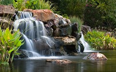 Waterfall in the DeGolyer Gardens of the Dallas Arboretum (James K *) Tags: tamron sp 70200mm f28 di vc usd g2 tamronsp70200mmf28divcusdg2 d850 nikon