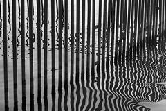 Broken Rythm / Нарушенный ритм (Boris Kukushkin) Tags: rythm bw abstract abstraction white lake water reflection streight curve прямая кривая вода отражение чб белое озеро абстракция арсат arsat 50mm f14