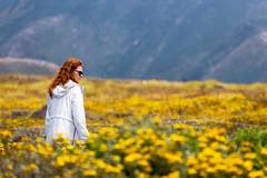 M in the Fields (Scriblerus) Tags: montanadeoro californiastatepark coastalcalifornia redhead womaninfield