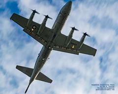 Panning An Overflying P-3C (AvgeekJoe) Tags: d5300 dslr nikon nikond5300 p3corion p3orion p3 lockheedp3corion lockheedp3orion p3c lockheedp3 lockheedp3c orion lockheedorion maritimepatrol usn navalaviation usnavy airplane aviation plane aircraft warplane