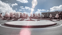 Flare (Christoph Wenzel) Tags: deutschland sigma16mmf14dcdn sonyalpha6000 thüringen 720nm stadt neuhausamrennweg infrarot natur sommer