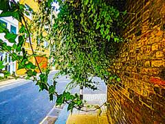 Creepy (Steve Taylor (Photography)) Tags: ivy creeper architecture digitalart building road blue brown green uk gb england greatbritain unitedkingdom london drain doors manholecover autumn