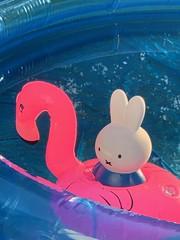 Summer vistas☀️ (markshephard800) Tags: art pool water summer blue pink flamingo miffy