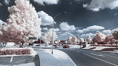 Infrared (Christoph Wenzel) Tags: deutschland sigma16mmf14dcdn sonyalpha6000 thüringen 720nm neuhausamrennweg infrarot natur sommer