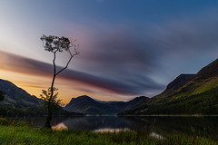Buttermere Lone Tree (selvagedavid38) Tags: lakedistrict nationalpark lake tree lonetree buttermere dawn sunrise otdoor landscape water sky clouds shore mountains