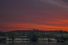 Rouge_DSC5576 (H.Valez) Tags: paysage nature lac soleil matin aurore rouge
