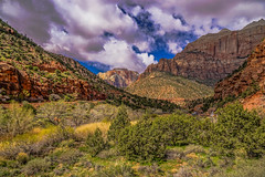 DSC00556--Zion Nat'l Park (Lance & Cromwell back from a Road Trip) Tags: utah zionnationalpark roadtrip 2019 highway9 washingtoncounty sony 24240mm 24240mmlens emount