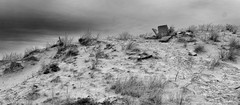 where gods use to talk (the ripped bystander) Tags: blackwhite sand sea shore dune