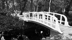 White Bridge (Birute54) Tags: monochrome bridge park tree palanga lithuania lietuva